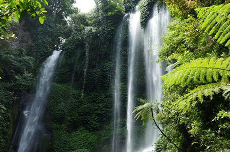 Private Tour: Sekumpul Waterfalls Hiking Tour