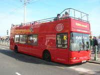 Brighton Hop-on Hop-off Tour - 24h Ticket