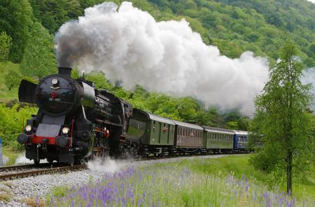 Bohinj Railway Steam Train Ride of the Alpine Region