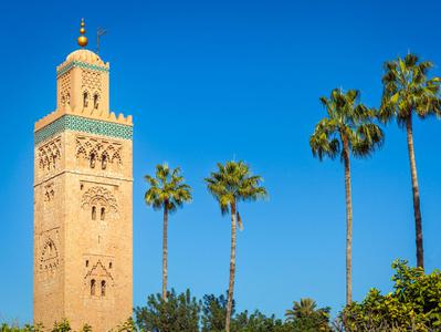 Morocco from Costa del Sol - Marrakech Casablanca and Fez - 5 Days - 4 Nights