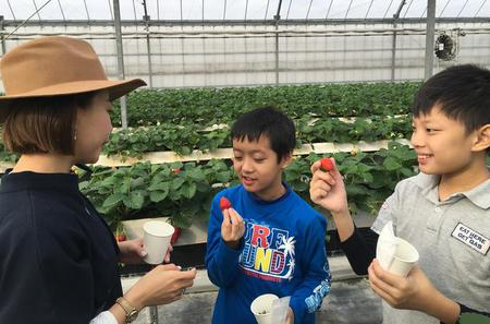 Fruit Picking and BBQ at a Farm in Aichi