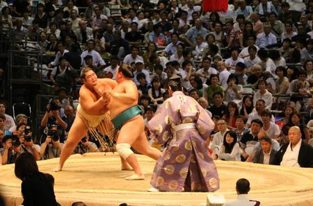 Guided Sumo Tournament Tour in Nagoya