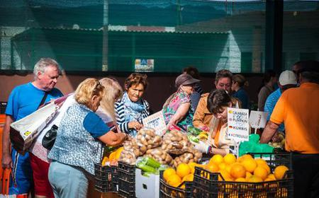 Half-Day Tour: Markets of Gran Canaria