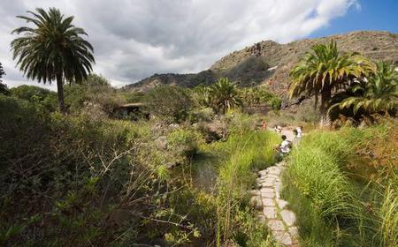 Bandama Volcano and Botanic Gardens Half-Day Tour