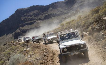 Gran Canaria: 4x4 Adventure & Camel Ride