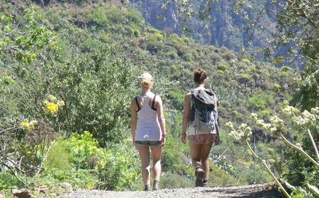 Guayadeque Canyon Trekking Tour