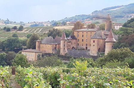 Beaujolais South Gourmet Wine Tour with Tasting from Lyon