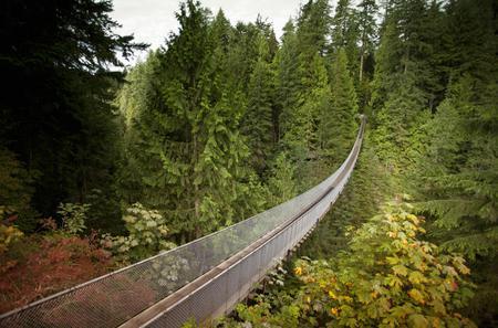 Private Tour to Capilano Bridge and Grouse Mountain