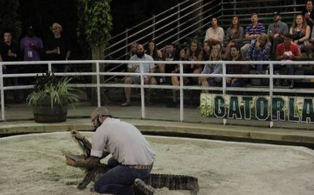 Florida Gator Experience
