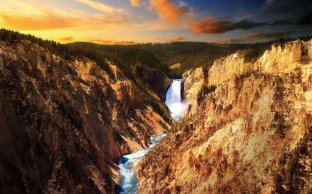 Yellowstone Old Faithful & Wildlife Public Tour