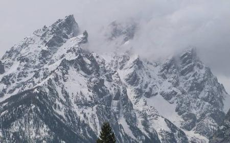 Grand Teton National Park Full-Day Tour