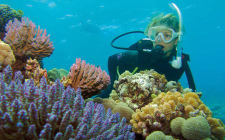 Silversonic Great Barrier Reef Dive & Snorkel Adventure