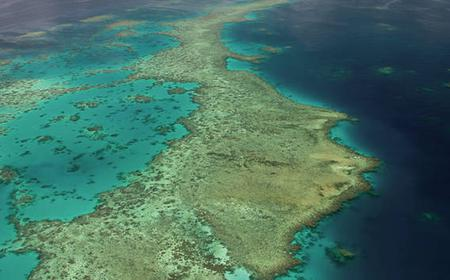 Reef Discovery: 30 Minute Scenic Helicopter Flight