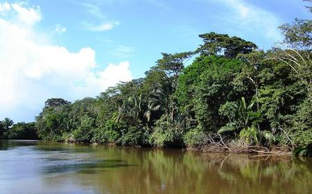 Palo Verde National Park: Half-Day Jungle River Cruise