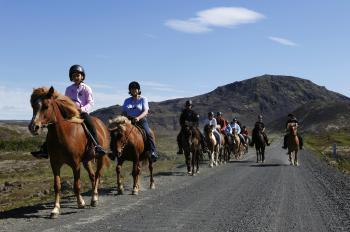 Hafnarfjörður: Family Adventure Horse Riding