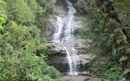 Rio de Janeiro: Tijuca Forest- Rainforest & Waterfall