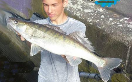 Hamburg: Zander Fishing on the Elbe