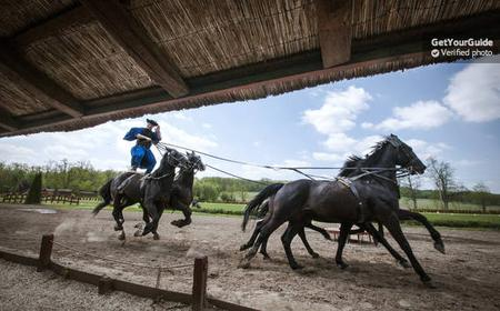 Magic Hungary Tour: Baroque Palace and Horse Show