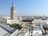 Tunis Carthage and Sidi Bou Said Full Day Trip from Hammamet