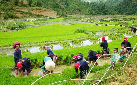 Sapa: 2-day Tour with Homestay in Ta Chai Village