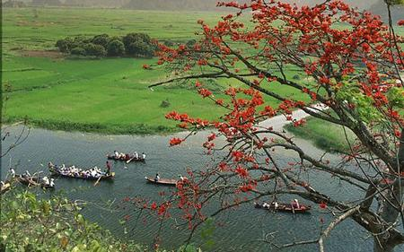 Pagodas of Hanoi Full-Day Tour