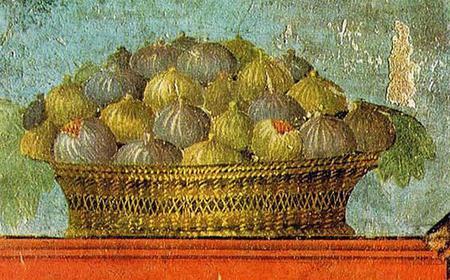 Stabia Oplontis and Antiquarium of Boscoreale