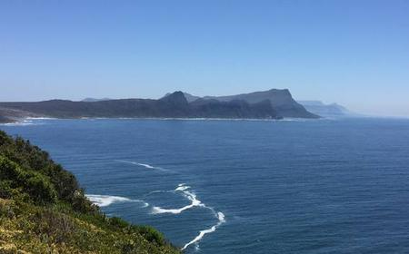 Daily Cape Point Trip