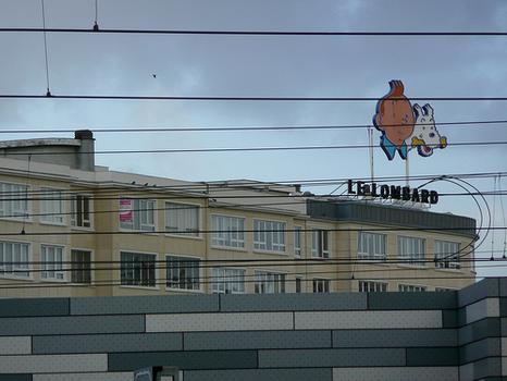 Tintin - Kuifje