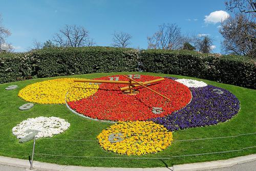 Horloge Fleurie - Flower Clock