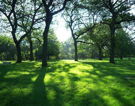 Horner Park