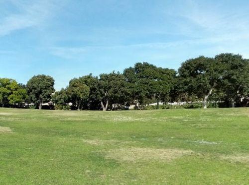 Tidelands Park