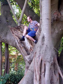 Lisbon Botanical Gardens