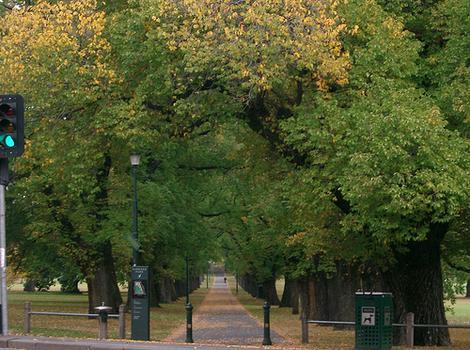 Toorak Park