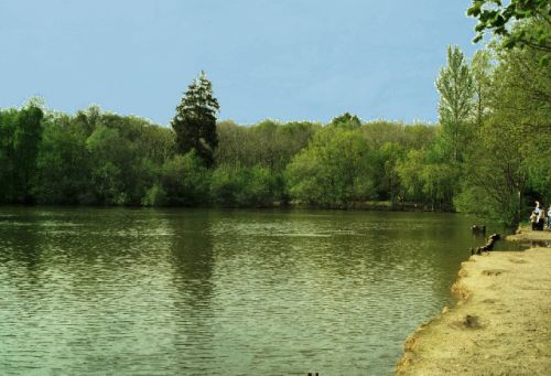 BrokersWood Country Park