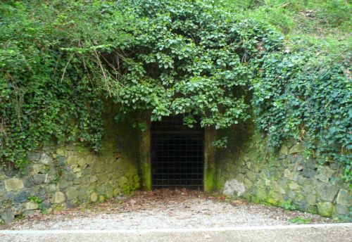 Mina Grott