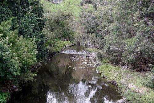 Rushall Garden