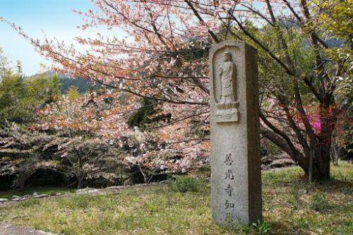Shoji-ji