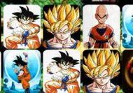 Dragon Ball Lucky Card