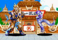 Dragon Ball Z Flash Fighting
