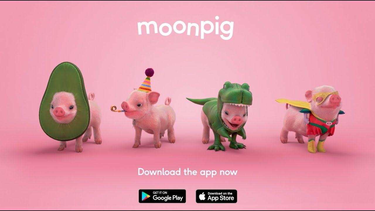문피그(Moonpig), 종이 카드 서비스에서 선물 플랫폼으로 진화