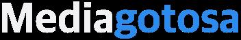 미디어고토사(Mediagotosa) logo