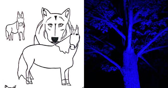 Bears and Stuff | Mason Jennings & Benson Ramsey