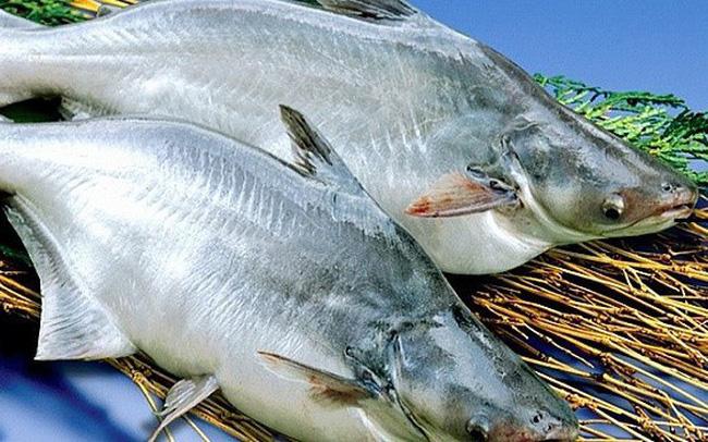 Chọn mua 2 con cá tra làm sạch sẽ