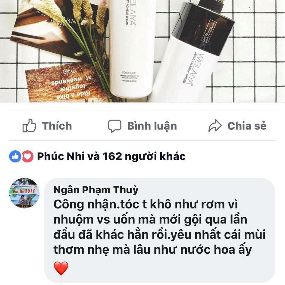 Cặp Dầu Phục Hồi Weilaiya cho tóc khô - xơ - hư tổn 750ml*2