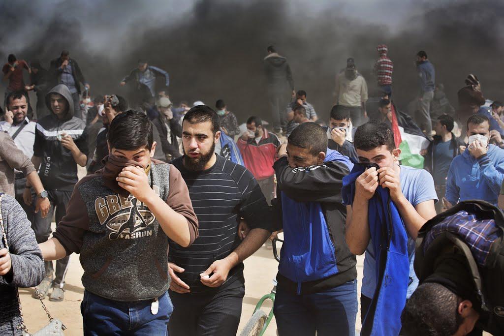 Fantastic Gaza Eid Al-Fitr 2018 - story_6beff39d-88b6-4ae8-8575-35c97876c006  Perfect Image Reference_26939 .jpg