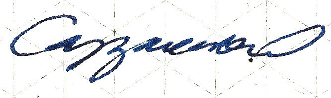 Olivier Cappuccio's Signature