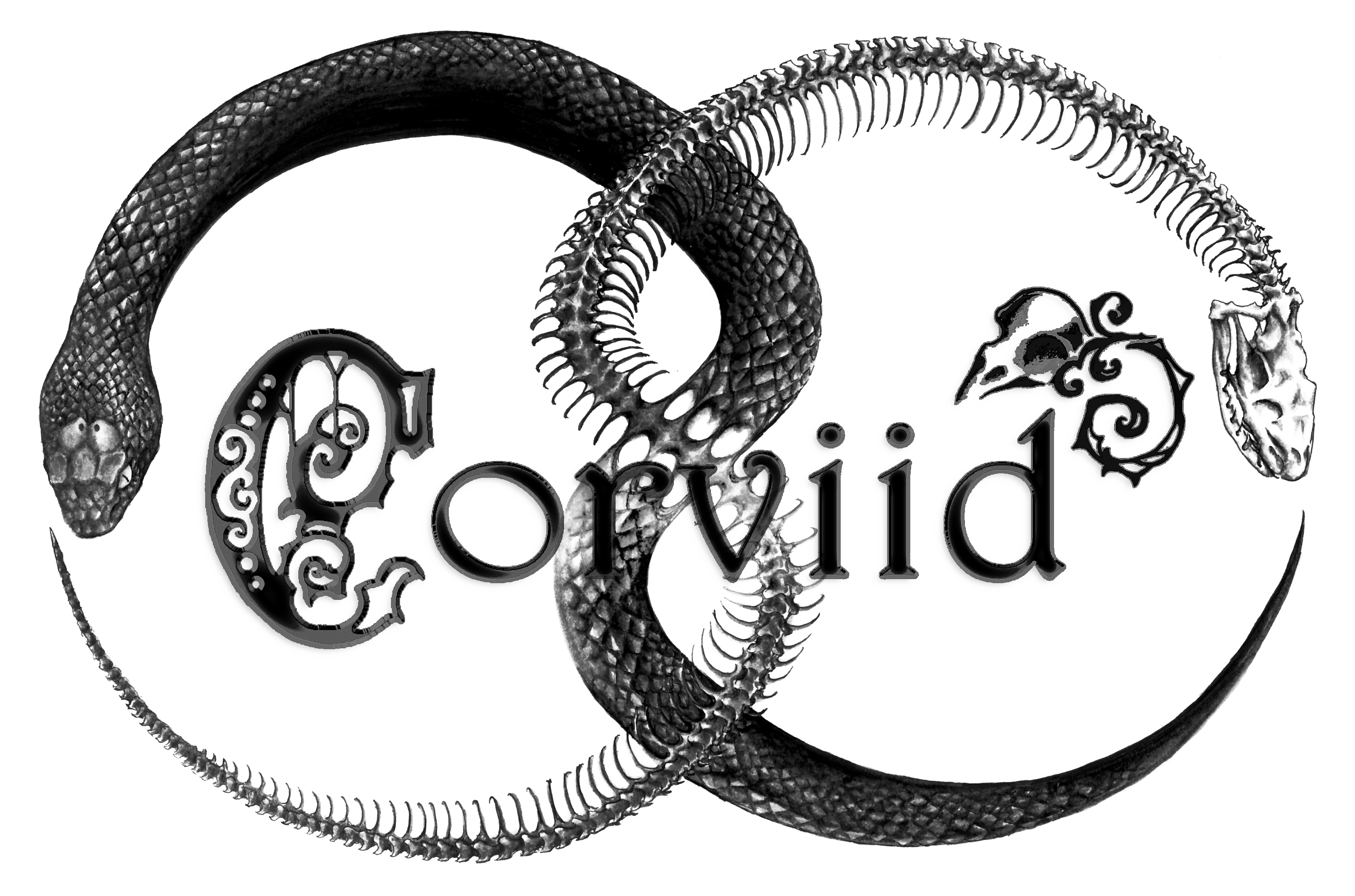 corviid's Signature