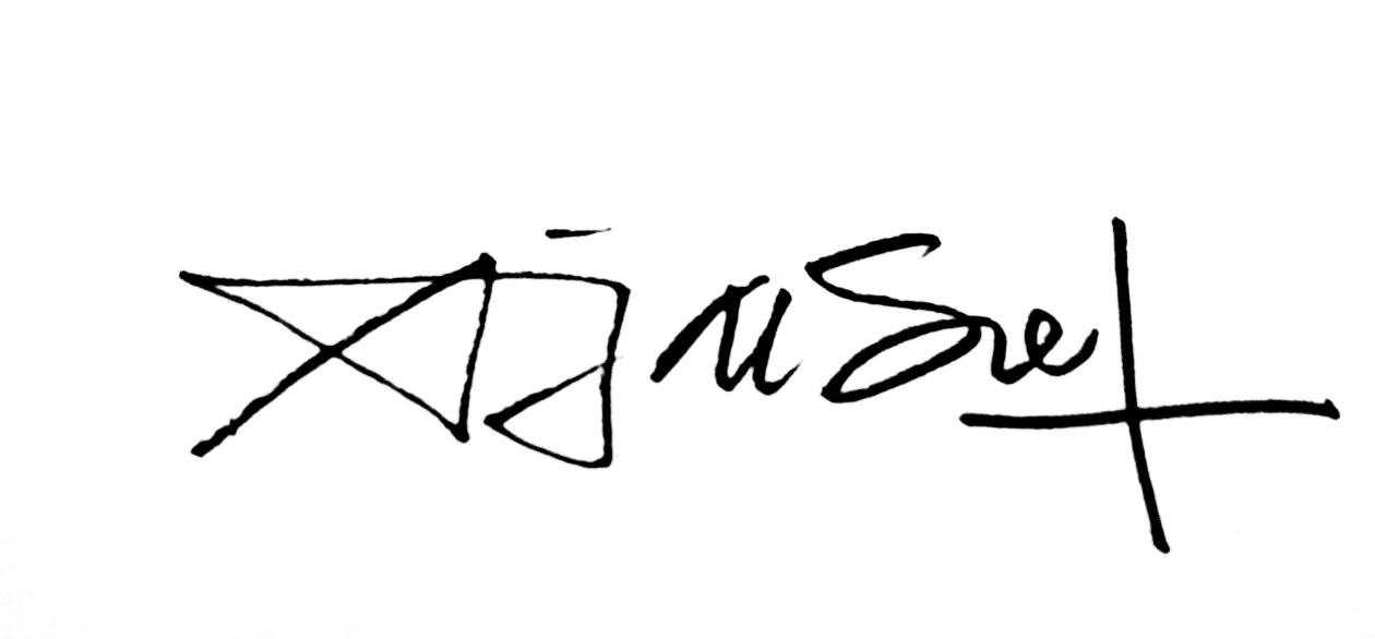 a g o e z y's Signature