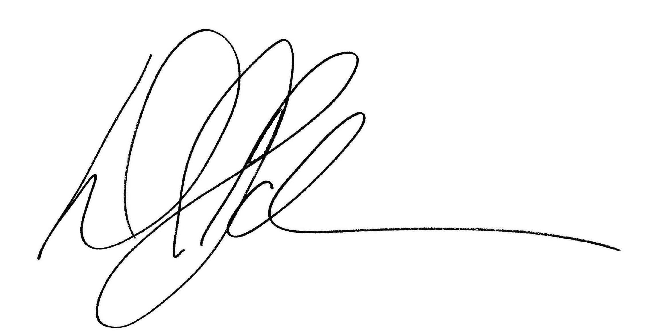 David Schmerer's Signature