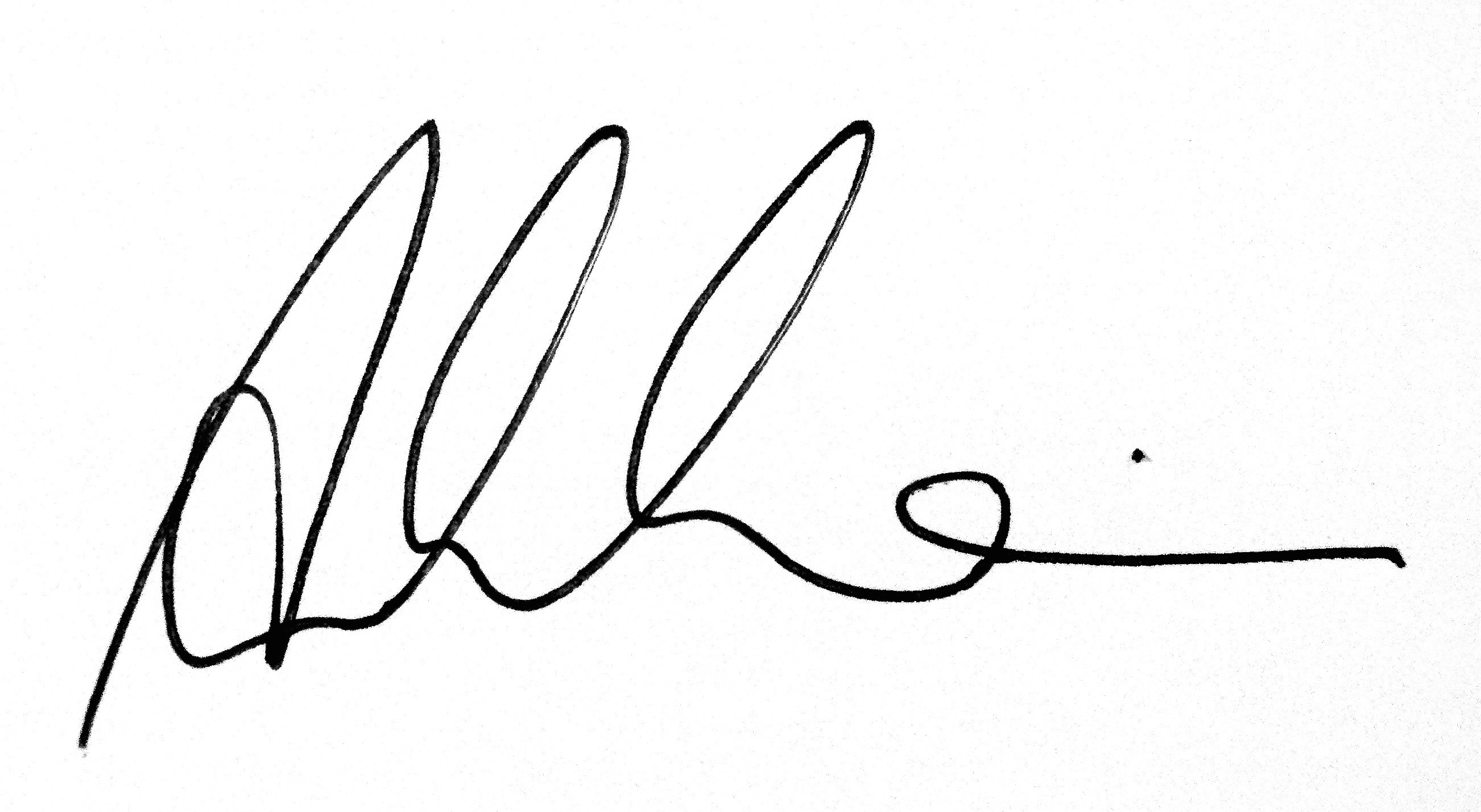 Ania Milo's Signature